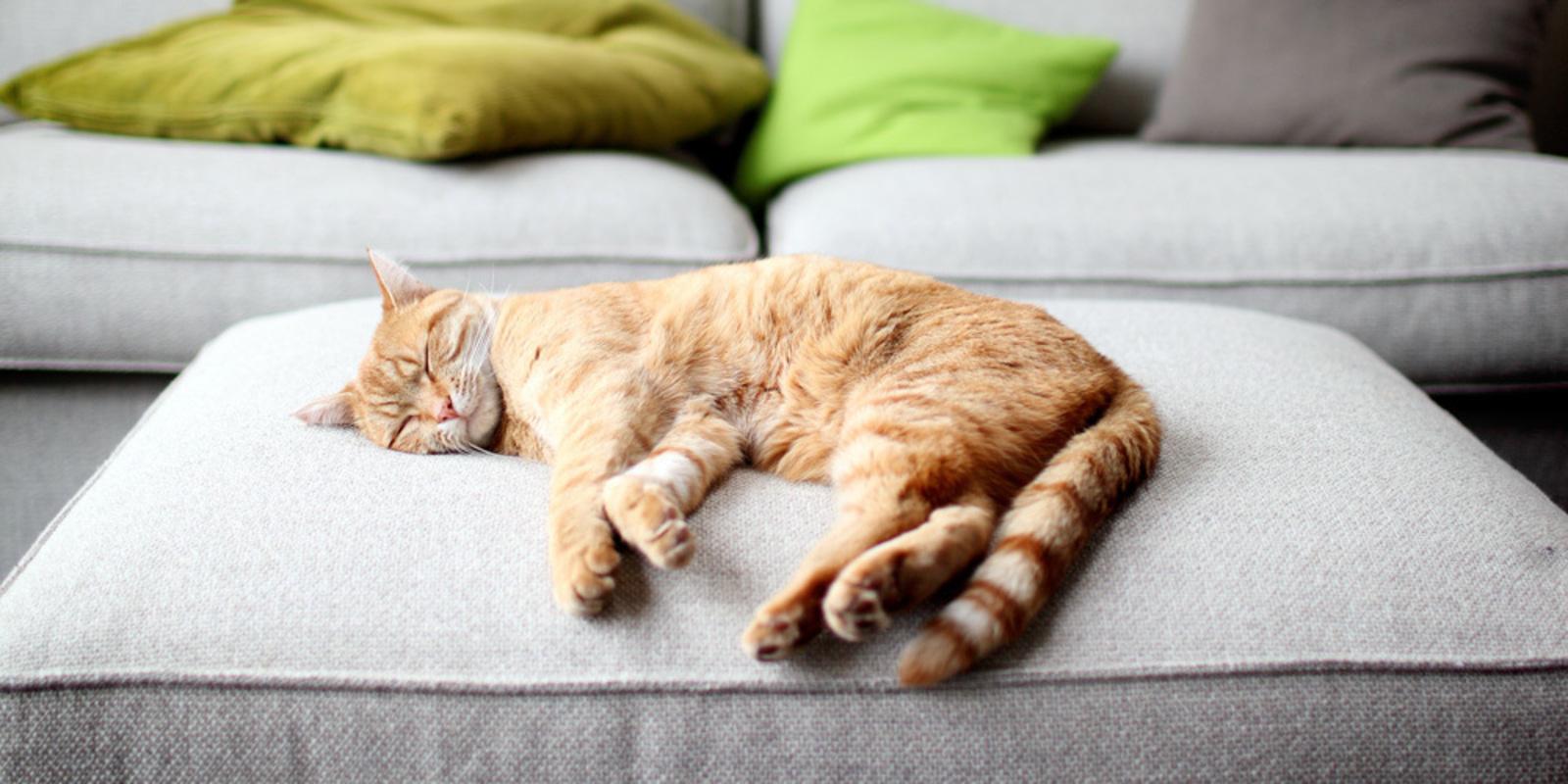 10 dingen in je huis die je onbewust moe maken