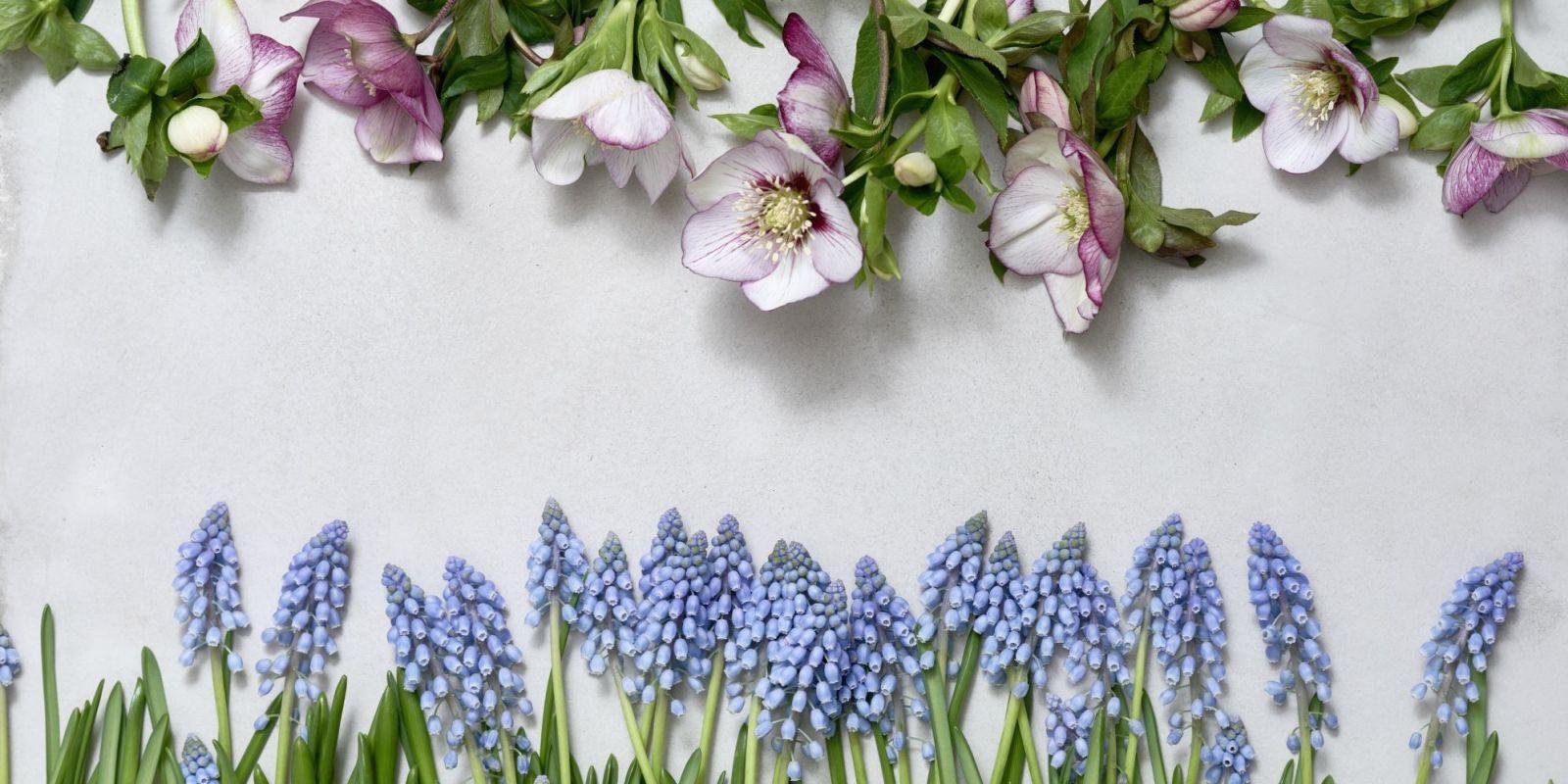 Diy: minimalistische kledingkast met bloempot